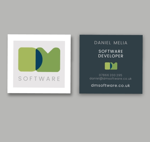 DM Software brand identity